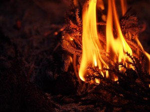聖なる火のまほう:インナーチャイルドと母とのメディエーション